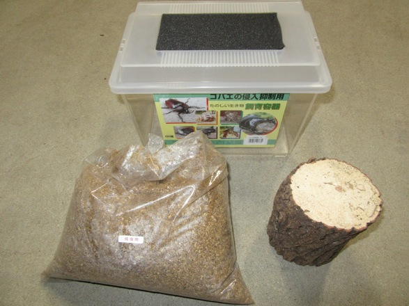 オオクワガタの産卵に使用する飼育用品の紹介