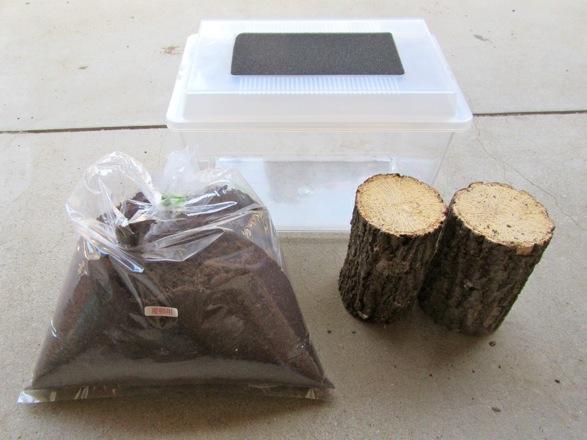 チョウセンヒラタの産卵に用いた主な飼育用品