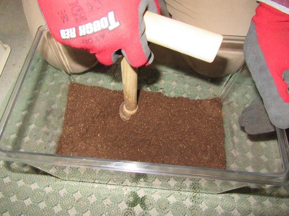 木製マットプレスでマットを固めます。