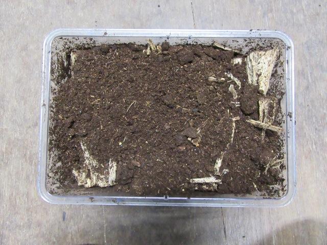 トクノシマノコギリの割りカス